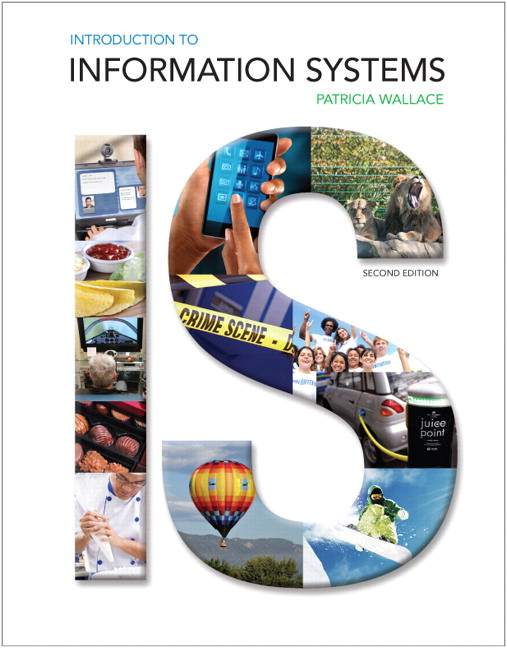 Introduction to Information Systems Solutions