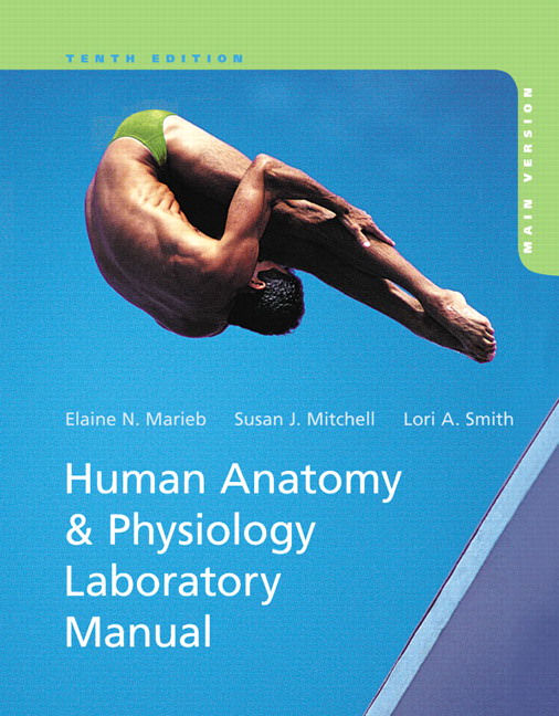 Human Anatomy and Physiology Laboratory Manual, Main Version Solutions