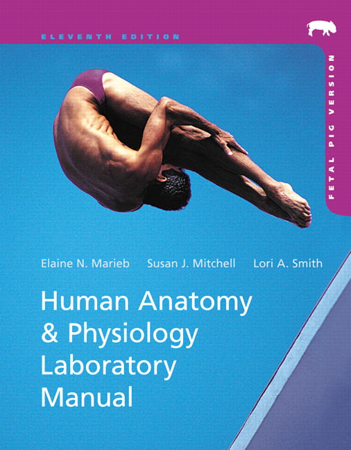 Human Anatomy and Physiology Laboratory Manual, Fetal Pig Version Solutions
